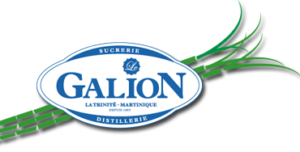 LOGO-GALION-SLOGAN10